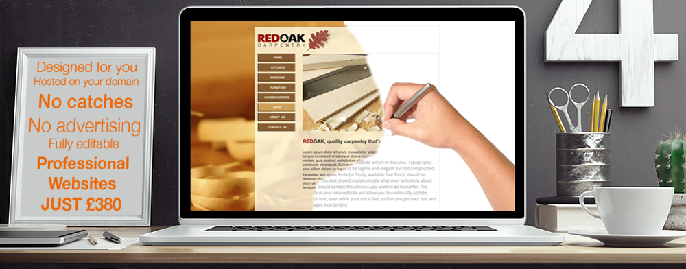 Professional websites from £380